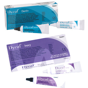 Product - DYCAL DENTINA/IVORY